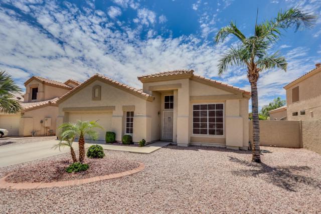 7361 E Lomita Avenue, Mesa, AZ 85209 (MLS #5772712) :: My Home Group