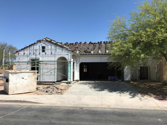 36892 W Mattino Lane, Maricopa, AZ 85138 (MLS #5772751) :: My Home Group