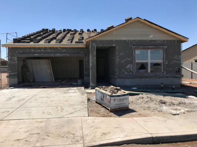 37035 W Mattino Lane, Maricopa, AZ 85138 (MLS #5772765) :: My Home Group