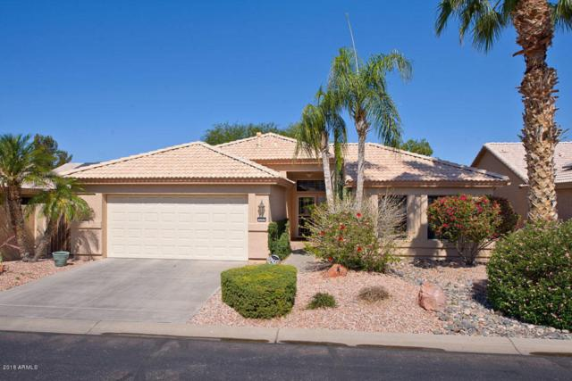 3232 N 146TH Drive, Goodyear, AZ 85395 (MLS #5772796) :: Kortright Group - West USA Realty