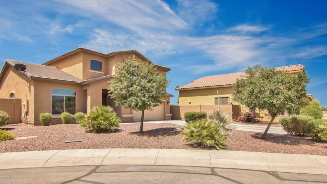41763 W Mano Place, Maricopa, AZ 85138 (MLS #5772874) :: The Daniel Montez Real Estate Group