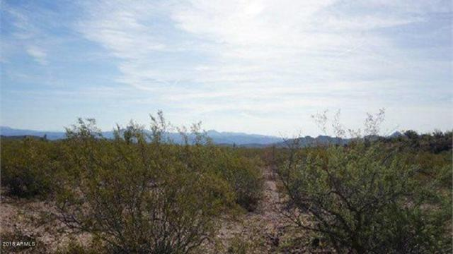 0 Bentley Street, Sunsites, AZ 85625 (MLS #5772880) :: The Garcia Group @ My Home Group
