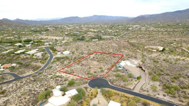 8034 E Tecolote Circle, Scottsdale, AZ 85266 (MLS #5772897) :: Yost Realty Group at RE/MAX Casa Grande