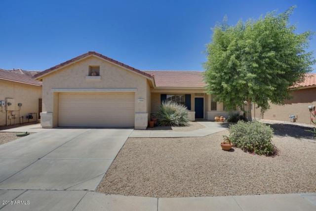 17478 N Goldwater Drive, Surprise, AZ 85374 (MLS #5772957) :: Essential Properties, Inc.