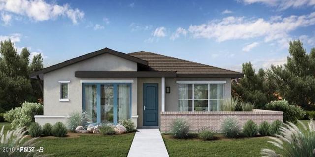 20758 W Fern Drive, Buckeye, AZ 85396 (MLS #5772983) :: Desert Home Premier