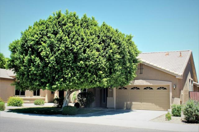 6984 W Blackhawk Drive, Glendale, AZ 85308 (MLS #5772985) :: Lifestyle Partners Team