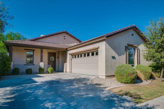 270 W Wisteria Place, Chandler, AZ 85248 (MLS #5772989) :: My Home Group