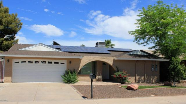 2815 N Comanche Drive, Chandler, AZ 85224 (MLS #5773064) :: The Everest Team at My Home Group