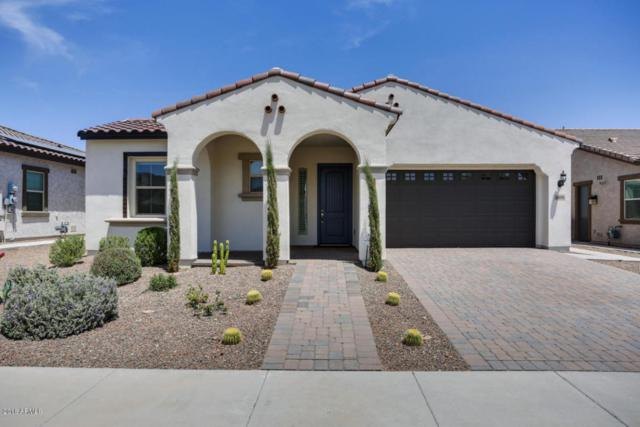 4899 N 207TH Lane, Buckeye, AZ 85396 (MLS #5773165) :: My Home Group