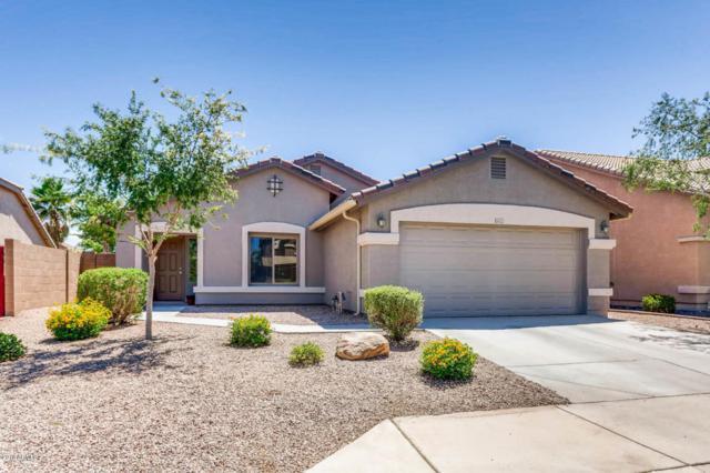 6022 N Almanza Lane, Litchfield Park, AZ 85340 (MLS #5773180) :: My Home Group