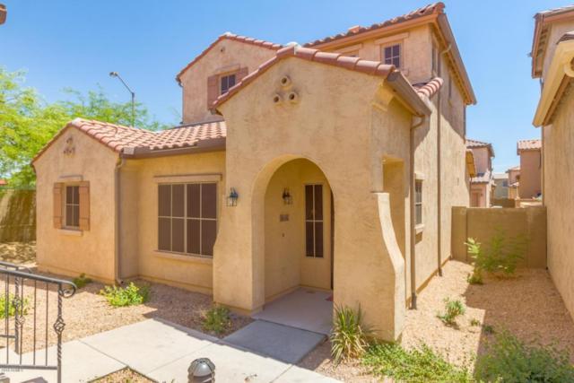 3632 W Bryce Court, Phoenix, AZ 85086 (MLS #5773213) :: My Home Group