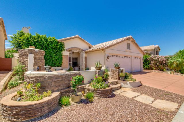 6117 W Questa Drive, Glendale, AZ 85310 (MLS #5773217) :: Devor Real Estate Associates