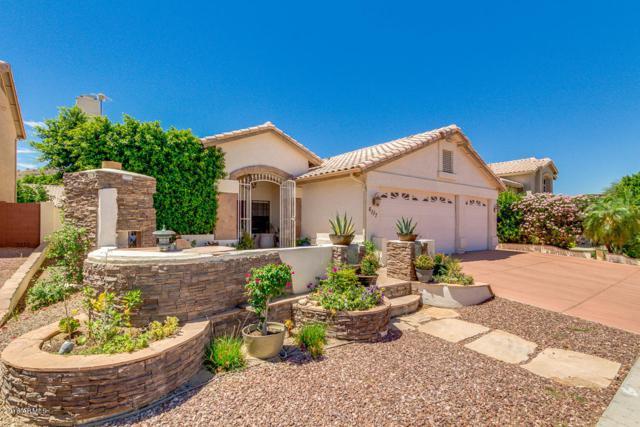 6117 W Questa Drive, Glendale, AZ 85310 (MLS #5773217) :: The Jesse Herfel Real Estate Group