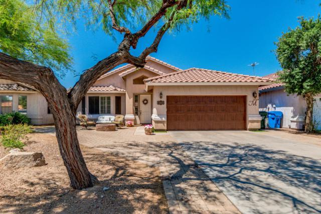 3220 E Desert Cove Avenue, Phoenix, AZ 85028 (MLS #5773237) :: The Everest Team at My Home Group