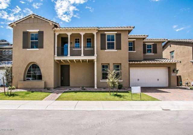 909 W Glacier Drive, Chandler, AZ 85248 (MLS #5773283) :: Essential Properties, Inc.