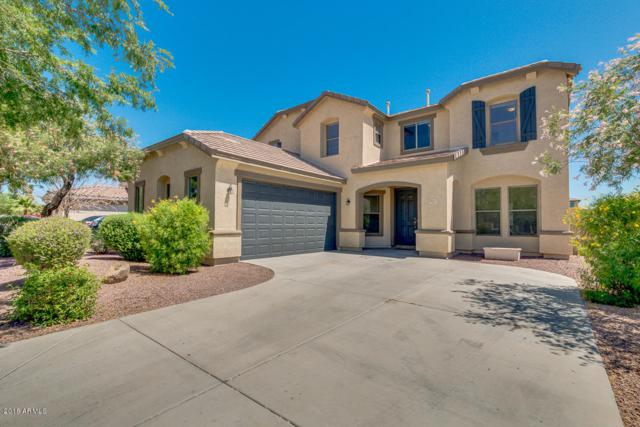 26011 N Sandstone Way, Surprise, AZ 85387 (MLS #5773287) :: The Daniel Montez Real Estate Group