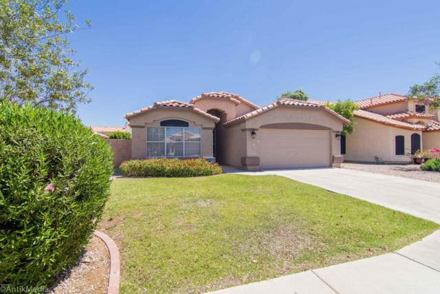 9637 W Runion Drive, Peoria, AZ 85382 (MLS #5773290) :: My Home Group