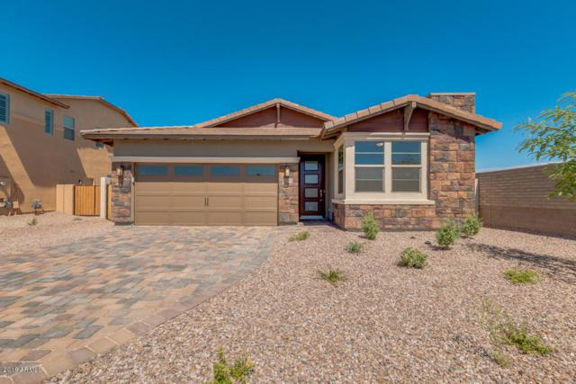 12551 W Caraveo Place, Peoria, AZ 85383 (MLS #5773327) :: My Home Group