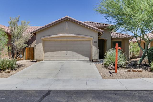 1920 W Hemingway Lane, Phoenix, AZ 85086 (MLS #5773399) :: My Home Group
