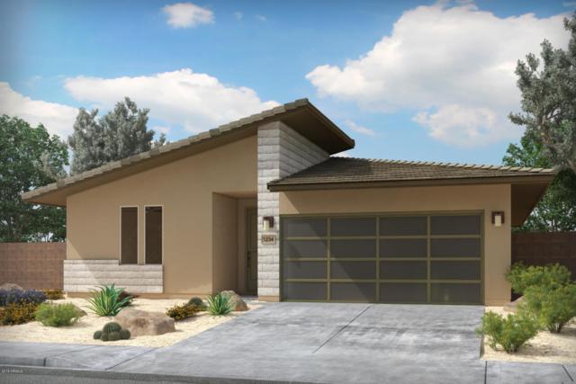 42272 W Balsa Drive, Maricopa, AZ 85138 (MLS #5773415) :: My Home Group