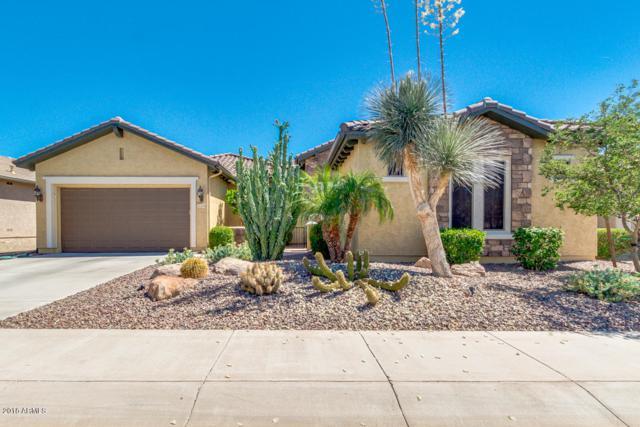 26499 W Mohawk Lane, Buckeye, AZ 85396 (MLS #5773422) :: Essential Properties, Inc.