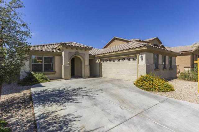 18375 W Westfall Way, Surprise, AZ 85374 (MLS #5773462) :: The Everest Team at My Home Group