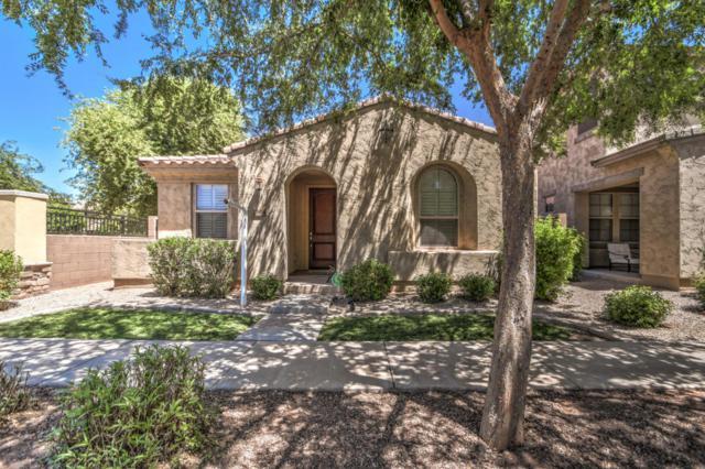 3414 E Betsy Lane, Gilbert, AZ 85296 (MLS #5773479) :: Kortright Group - West USA Realty