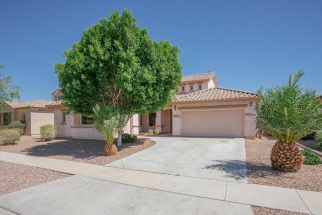 15246 W Calavar Road, Surprise, AZ 85379 (MLS #5773485) :: Kortright Group - West USA Realty