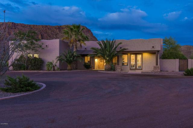 42307 N 7TH Street, Phoenix, AZ 85086 (MLS #5773523) :: The Jesse Herfel Real Estate Group