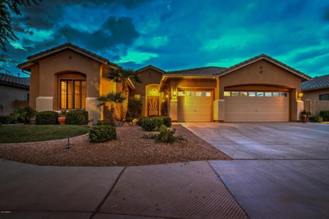 4186 E Clubview Drive, Gilbert, AZ 85298 (MLS #5773541) :: Santizo Realty Group