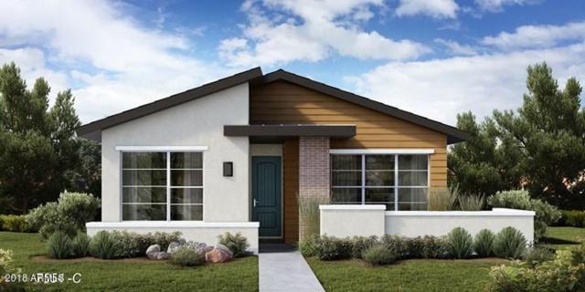 20751 W Fern Drive, Buckeye, AZ 85396 (MLS #5773621) :: Desert Home Premier