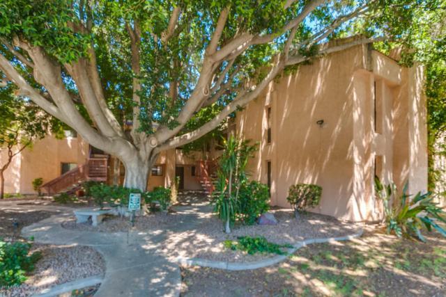 3131 W Cochise Drive #239, Phoenix, AZ 85051 (MLS #5773649) :: Keller Williams Legacy One Realty