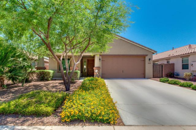 18661 W Vista Norte Street, Goodyear, AZ 85338 (MLS #5773832) :: Kortright Group - West USA Realty