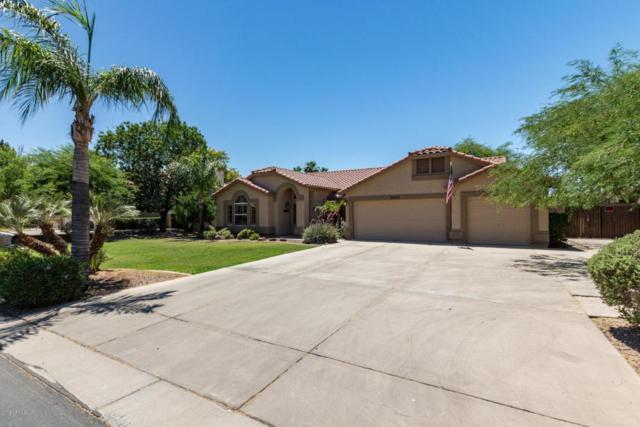 2627 E Encinas Avenue, Gilbert, AZ 85234 (MLS #5773875) :: The Everest Team at My Home Group