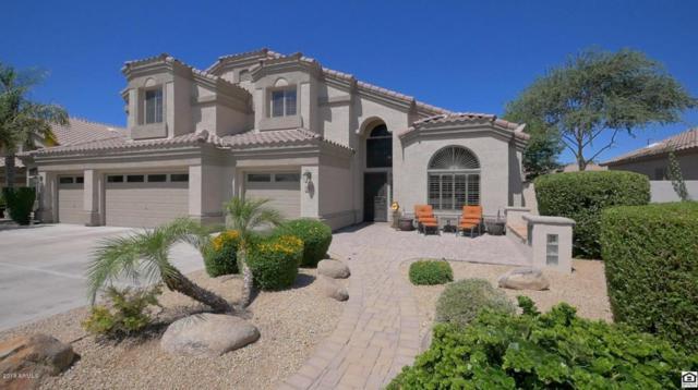 1662 S Boulder Street, Gilbert, AZ 85295 (MLS #5773883) :: Arizona Best Real Estate