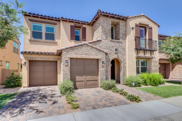 2040 W Musket Place, Chandler, AZ 85286 (MLS #5773885) :: My Home Group