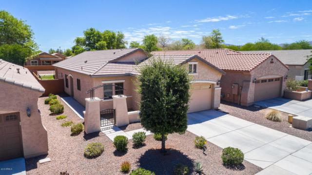 20543 N 261ST Avenue, Buckeye, AZ 85396 (MLS #5773891) :: Kortright Group - West USA Realty