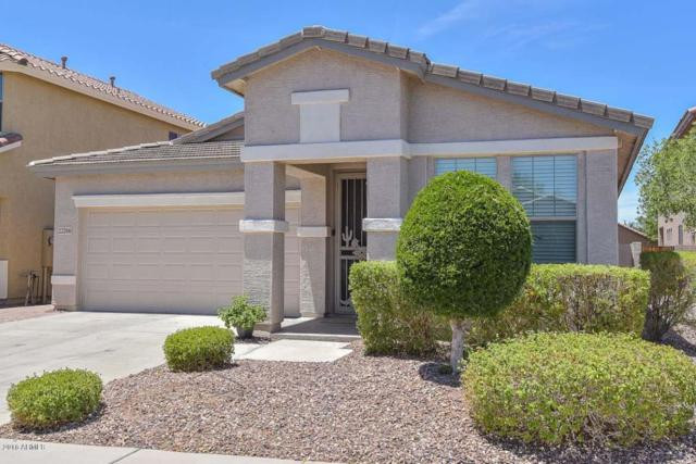 22266 N 102ND Lane, Peoria, AZ 85383 (MLS #5773970) :: The Everest Team at My Home Group