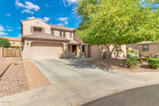 4249 S Dante Circle, Mesa, AZ 85212 (MLS #5774002) :: The Everest Team at My Home Group