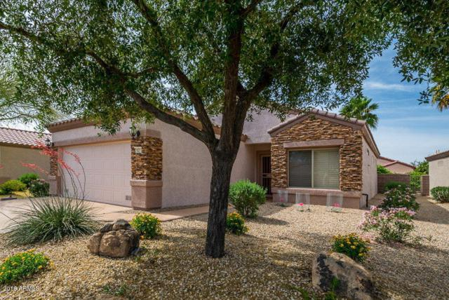 16217 W Mountain Pass Drive, Surprise, AZ 85374 (MLS #5774023) :: The Everest Team at My Home Group
