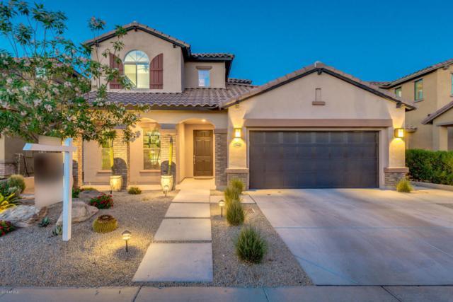 17489 N 96TH Way, Scottsdale, AZ 85255 (MLS #5774034) :: My Home Group