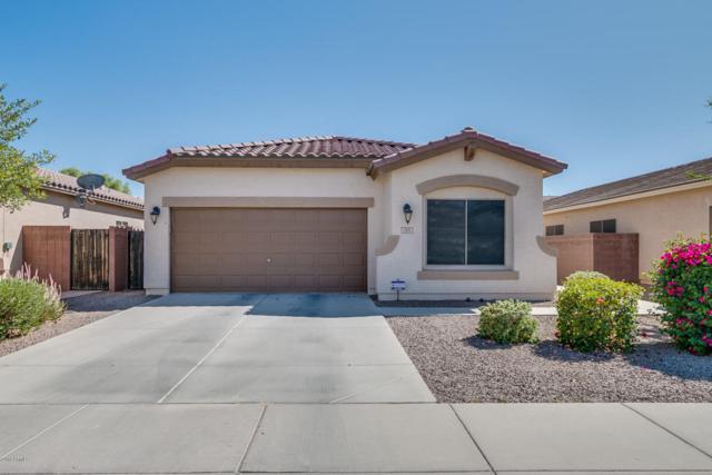 293 W Dragon Tree Avenue, Queen Creek, AZ 85140 (MLS #5774048) :: My Home Group