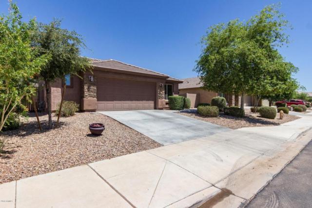 19670 W Morning Glory Street, Buckeye, AZ 85326 (MLS #5774049) :: Lux Home Group at  Keller Williams Realty Phoenix