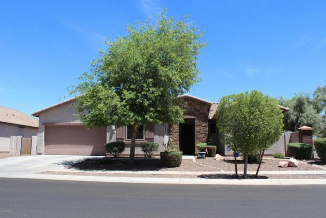 8740 W Lamar Road, Glendale, AZ 85305 (MLS #5774054) :: My Home Group