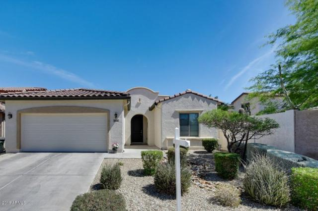 5518 W Andrea Drive, Phoenix, AZ 85083 (MLS #5774092) :: The Everest Team at My Home Group