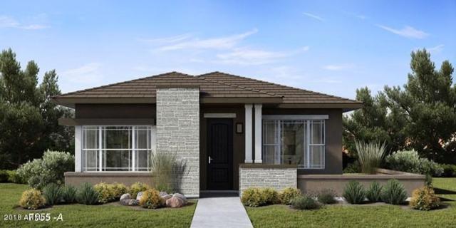 20759 W Fern Drive, Buckeye, AZ 85396 (MLS #5774095) :: Desert Home Premier