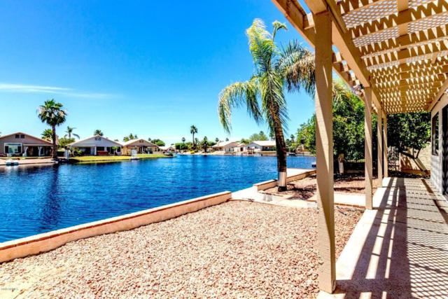 246 S Lakeview Boulevard, Chandler, AZ 85225 (MLS #5774188) :: The Garcia Group