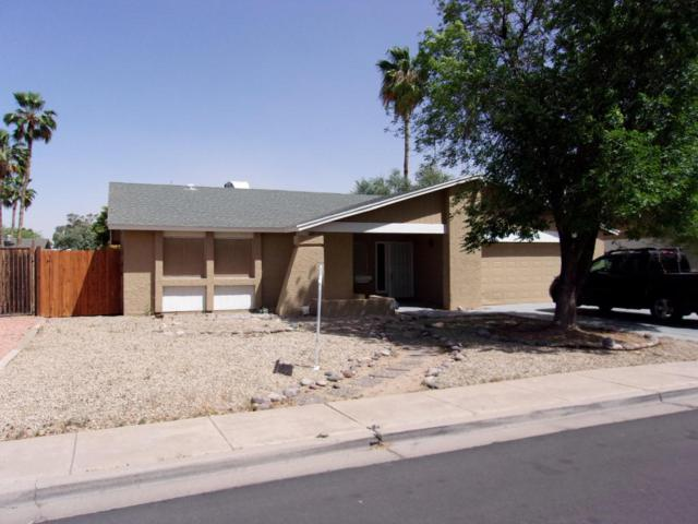 2343 S Westwood Drive, Mesa, AZ 85210 (MLS #5774212) :: Group 46:10