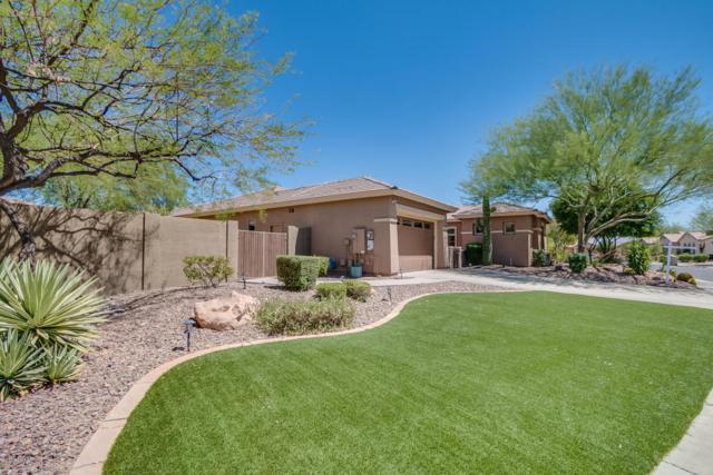 2351 W Sax Canyon Lane, Anthem, AZ 85086 (MLS #5774290) :: My Home Group