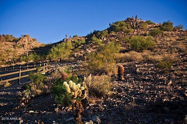 6800 N 39TH Place, Paradise Valley, AZ 85253 (MLS #5774298) :: CC & Co. Real Estate Team